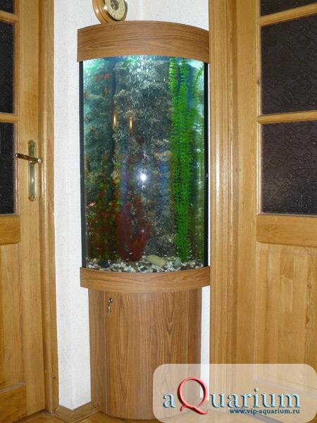 Угловой панорамный аквариум своими руками
